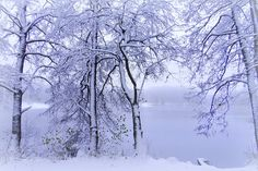 White day of autumn by ginaups with autumntreeslandscapelakefrozencoldnaturesnowmood