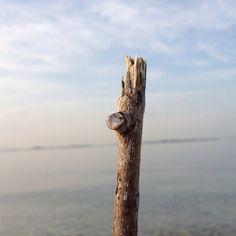 Hope✨ Sea