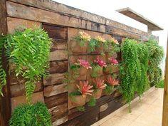 inspiração e diversão: jardim vertical