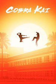 Watch Cobra Kai Tv Show Online Free Movie4u Karate Kid Cobra Kai Dojo Karate Kid Movie