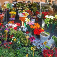 Os dias estão bem gelados!!!  Mas estão lindíssimos!!! Sol céu azul  Um lugar legal para visitar num dia como esse é campo de Fiori! Todas as manhãs tem uma feirinha de flores lembrancinhas comida roupas... Uma explosão de cores e de coisas típicas italianas para ver e comprar! . Lembre-se dos diversos sorteios que estão acontecendo esse mês! Participem!!! . Veja mais no Snapchat Em_Roma  #Roma #europe #instatravel #eurotrip #italia #italy #rome #trip #travelling #snapchat #emroma#viagem…