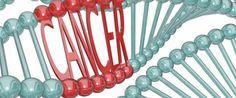 El NIH (instituto nacional del cáncer), relaciona la obesidad con diferentes tipo de cáncer.
