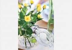 O pote para guardar mantimentos ganha novo uso e se transforma em um vaso de flores  Rogério Voltan / Casa e Jardim