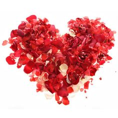 #flowers // #hearts