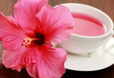 Health benefits of hibiscus are pretty numerous. Hibiscus extracts can help you to solve many health problems. The health benefits of hibiscus are Hibiscus Health Benefits, Coconut Health Benefits, Hibiscus Tea, Hibiscus Flowers, Hibiscus Plant, Hibiscus Sabdariffa, Home Remedies For Hair, Healthy Oils, Edible Flowers