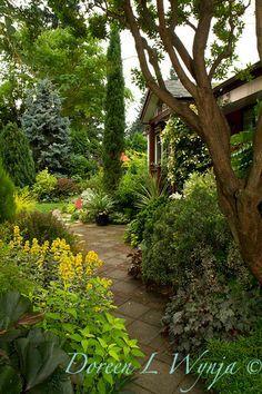 tom vetter garden - Google Search