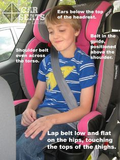 Harness or Booster: When to Make the Switch! - Car Seats For The Littles