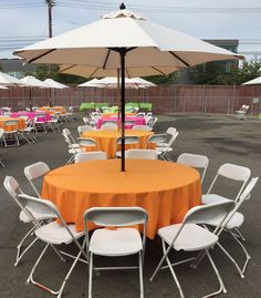 guest table with market umbrella and white plastic folding chairs Plastic Folding Chairs, Paper Table, Market Umbrella, Picnic Time, China Plates, Table Covers, Bamboo, Wedding Decorations, Patio