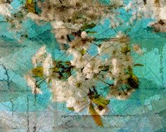 Instant Download Cherry  Blossom Instant Digital by LEXIBAGS, $5.00