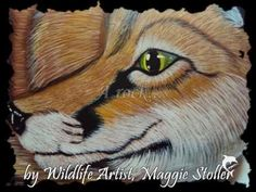 ▶ Hand painted rocks fox - YouTube