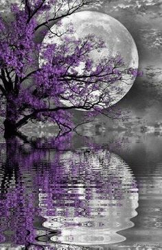 ^^ I really appreciate this beautiful moon with the reflection on gentle rippling water. Beautiful Nature Wallpaper, Beautiful Moon, Beautiful Landscapes, Beautiful Scenery, Beautiful Space, Simply Beautiful, Beautiful Things, Beautiful Flowers, Galaxy Wallpaper