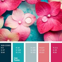 RGB CODES
