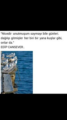 Nicedir unutmuştum Edip Cansever Saga, Quotes, Movies, Movie Posters, Crafts, Diy, Quotations, Manualidades, Film Poster