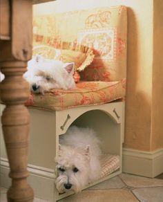 Dogs life * Vida de Cão