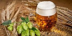 I recently wrote about how I, like many homebrewers, like to experiment and evaluate new ingredients that we come across. This is especially true when it comes to a new type of hop. In order to evaluate the new hop to get a better idea of the aromas and flavors I can expect, I like to make hop tea o…