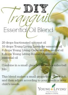 Young Living 178314466476473321 - YL Tranquil A DIY essential oil blend for calming, relaxation, and promoting sleep. Inspired by Young Living's Tranquil blend. ORDER ID Source by Helichrysum Essential Oil, Cedarwood Essential Oil, Chamomile Essential Oil, Essential Oil Uses, Young Living Oils, Young Living Essential Oils, Oils For Sleep, Essential Oil Diffuser Blends, Perfume
