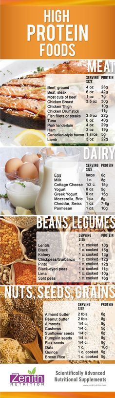 High Protein Food. Meat, Dairy, Beans & Legumes, Nuts, Seeds, Grains. Best supplements from Zenith Nutrition. Health Supplements. Nutritional Supplements. Health Infographics
