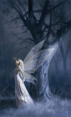 a moonlit fairy ##fairyart
