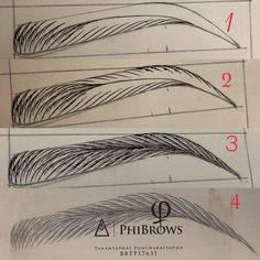 Microblading Eyebrows : Practice step by step Tananyaphat puncharatsopha Thailand Mircoblading Eyebrows, How To Draw Eyebrows, Eyebrow Makeup Tips, Permanent Makeup Eyebrows, Drawing Techniques, Drawing Tips, Phi Brows, Eyebrow Tattoo, Tattoo Eyebrows