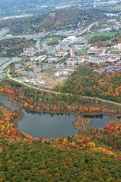 This is an arial view of Binghamton University in the fall. Binghamton New York, Binghamton University, Trip The Light Fantastic, The Next Big Thing, Upstate New York, Going Home, Aerial View, Small Towns, Great Places