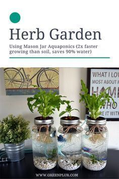 nice 3 Mason Jar Aquaponics Kit - Organic, Sustainable, Fish Hydroponics Herb Garden (WITHOUT JARS) Shocker! How To Launch Your Own Woodworking Business For Under . Hydroponic Gardening, Organic Gardening, Container Gardening, Gardening Tips, Aquaponics Plants, Aquaponics Greenhouse, Organic Hydroponics, Indoor Greenhouse, Gardening Services