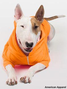 americanapparel:  Shop the Neon Orange Flex Fleece Dog Zip Hoodie: HERE