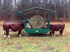 Cattle Hay Feeder on Skids