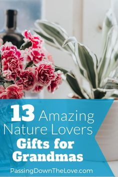 Whether you're buying for Christmas, a birthday, Mother's Day or any other occasion, we can help you find the perfect nature lovers gifts for Grandma. Birthday Gifts For Grandma, 80th Birthday Gifts, Birthday Celebration, Gifts For Mom, Birthday Ideas, Birthday Crafts, Diy Gifts, Christmas Gift Guide, Christmas Gifts For Women