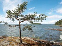 Klippenküste bei Birka. Die Mälar-Wellen rollen längst über die Geschichte des Wikinger-Handelsplatzes hinweg.