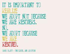 WHY we adopt!