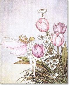 Ida Rentoul Outhwaite  1888-1960  -  Tulip Time