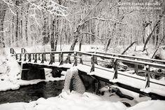 one of many bridges in Pet's Park Kenosha, WI