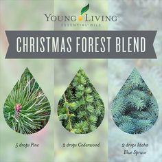Christmas forest diffuser blend: pine, cedarwood,  spruce