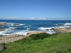 134 ha farm in Cape St Francis, Ongegunde Vryheid, Cape St Francis, Property in Cape St Francis - T143642