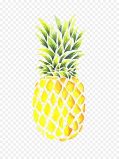 New fruit drawing pineapple Ideas Pinapple Painting, Pineapple Drawing, Pineapple Art, Fruit Painting, Pineapple Images, Pineapple Watercolor, Water Color Pineapple, Pineapple Quotes, Pineapple Ideas