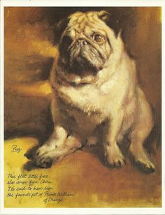 Pug Mop by Rien Poortvliet 1983 colour dog print