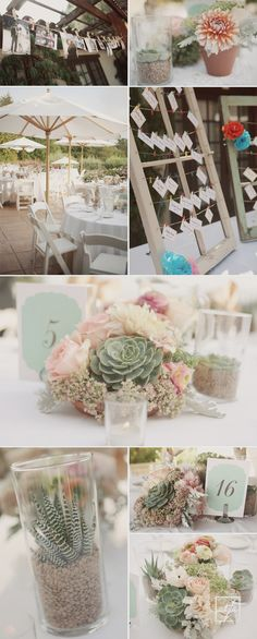 outdoor wedding ideas and all the succulents! Not tiffs style of chairs, tables or umbrellas though..