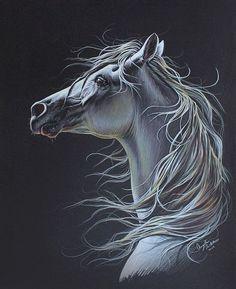 Arabian Horse Colored Pencil Drawing, Original Artwork, 16x20 on Etsy