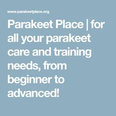 Parakeet Place   for all your parakeet care and training needs, from beginner to advanced!