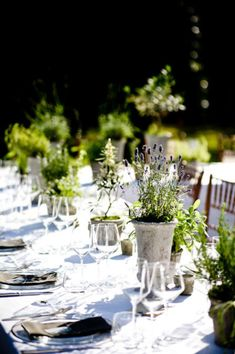 You can't go wrong with potted herbs such as rosemary and lavender for a centerpiece.