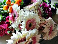 Playing with Flowers: 10 Steps on How to Celebrate Valentines Day with a Loved One