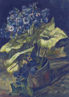 Vincent Van Gogh - Cineraria - 1886 - I also love artwork by Vincent Van Gogh