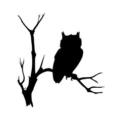 Halloween Owl Silhouette These owls are easy to to make Tree Silhouette Tattoo, Silhouette Clip Art, Animal Silhouette, Owl Outline, Outline Drawings, Halloween Owl, Halloween Clipart, Owl Clip Art, Clipart Black And White