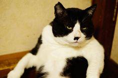 里親さんブログ笑って・・・ - http://iyaiya.jp/cat/archives/75374