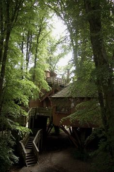 tree house, fairy, green, home, loft, relaxation room