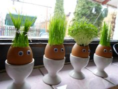 Grass Heads   TheWHOot