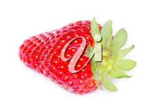 strawberries isolated on white Royalty Free Images, Strawberries, Stock Photos, Red, Strawberry Fruit, Copyright Free Images, Strawberry