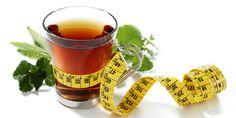 Chá para emagrecer - Os 6 melhores para emagrecer rápido: Chá de Hibisco, Chá Pu-erh, Chá verde, Chá de Mirtilo, e outros ...