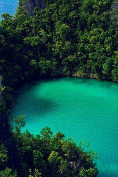 Pianemo Islands (Raja Ampat) 18, Roy Singh