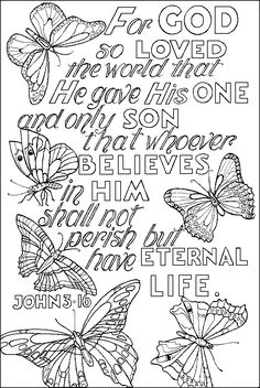 John 3:16 and butterflies